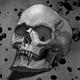 Аватар пользователя toeloy