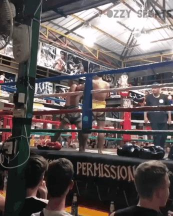 Телепортировался Спорт, Боевые искусства, Тайский бокс, Гифка