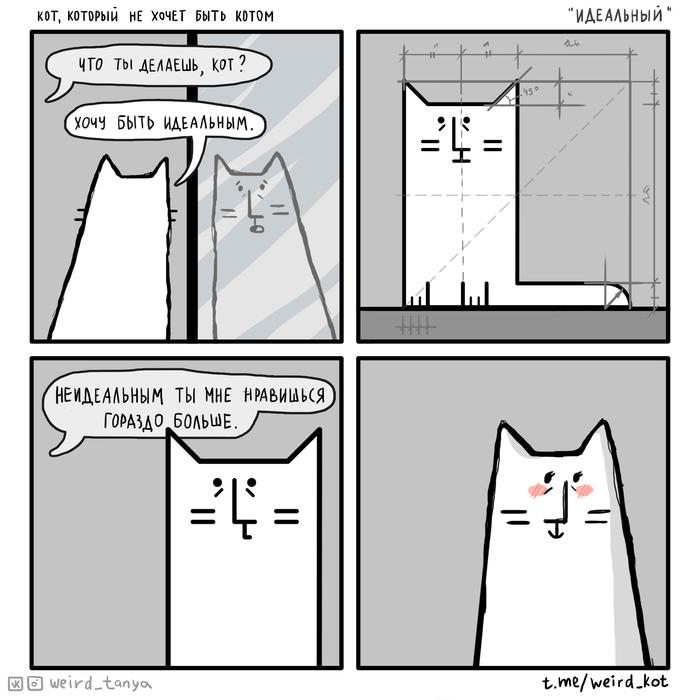 """Кот, который не хочет быть котом #34 """"Идеальный"""""""
