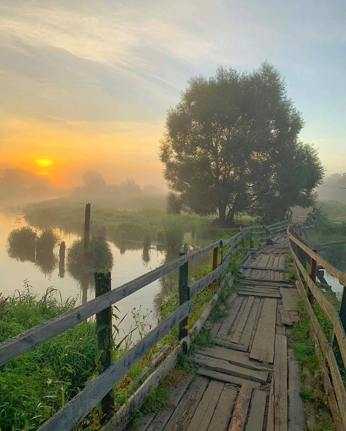 Летний рассвет у реки