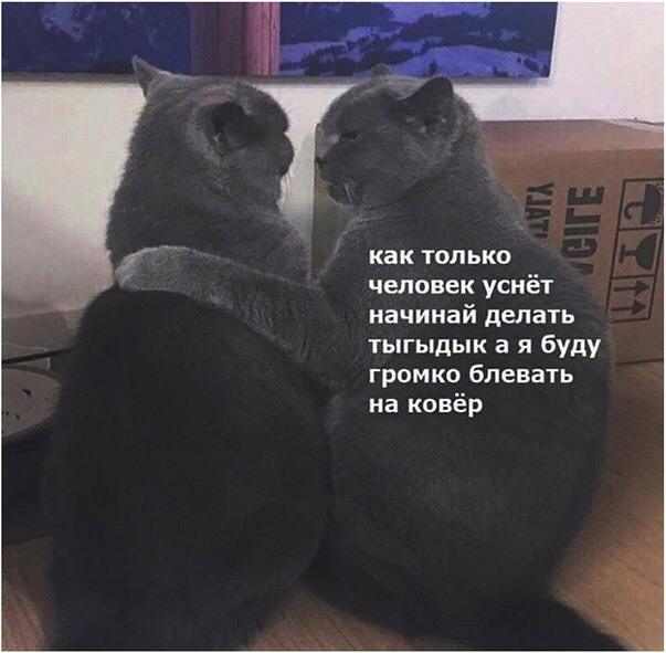 Скоро наступит ночь))