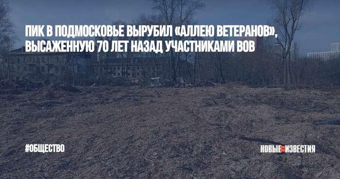 В Подмосковье застройщик без разрешения вырубил 70-летнюю Аллею ветеранов