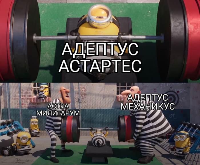 Типичные Астартес