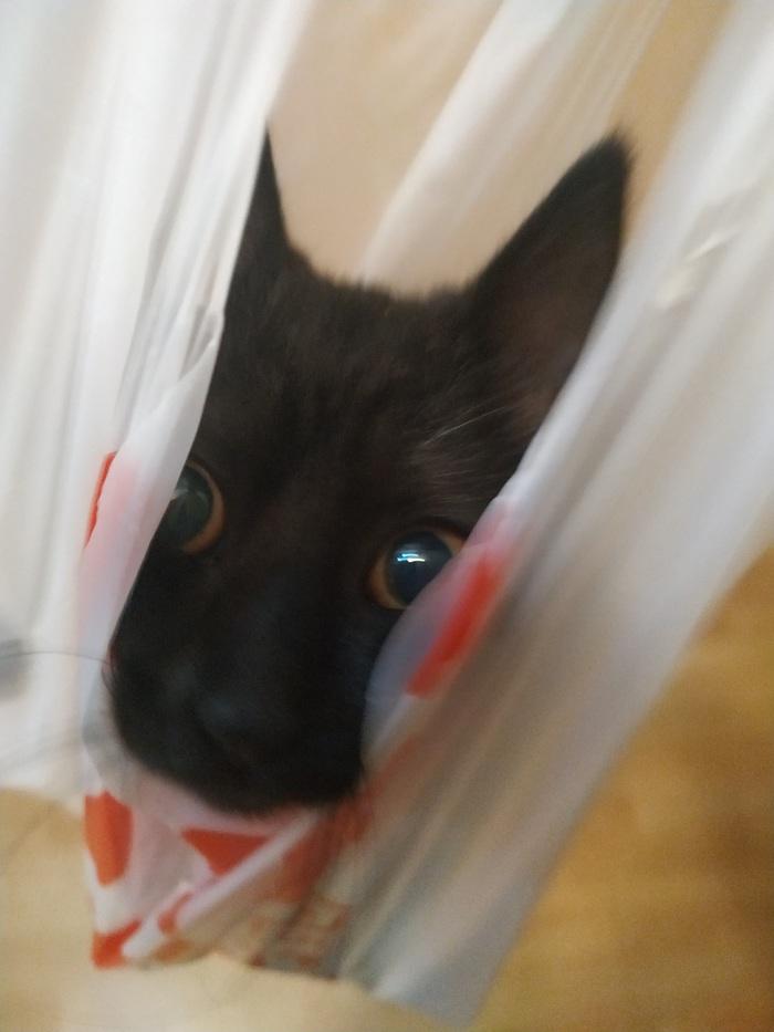 В пакете