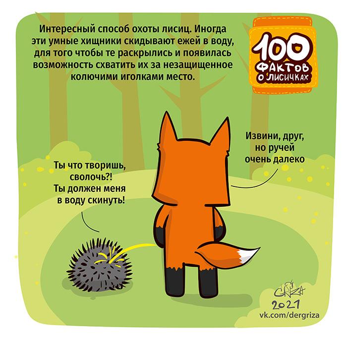 Факты о лисичках