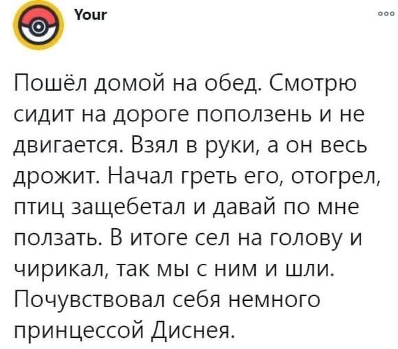 Спасаем енота !)