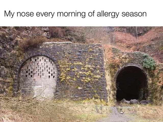 """Мой нос каждое утро в """"сезон"""" аллергии"""