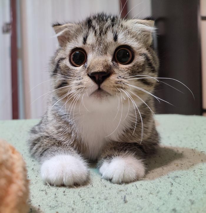 Ты меня снимаешь?