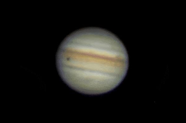 Впервые вчера попробовал сфоткать проход спутника Ио по диску Юпитера со своего балкона Космос, Юпитер, Астрономия, Астрофото, Ио, Гифка