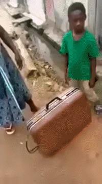 Пацан запер друга в чемодане Чемодан, Fail, Гифка