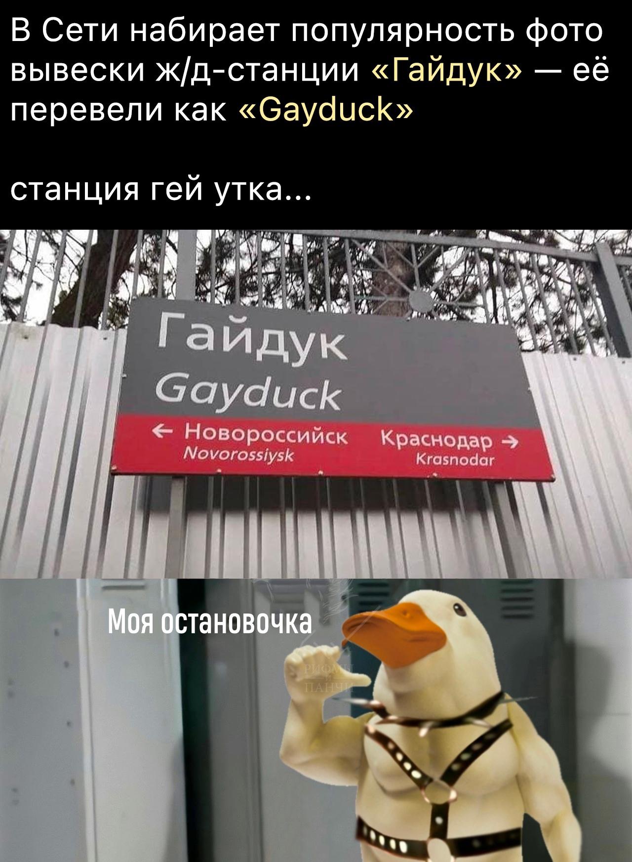 https://cs14.pikabu.ru/post_img/big/2021/04/06/7/1617704962153579658.jpg